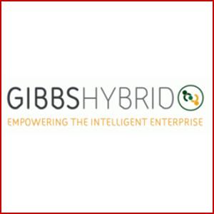 GibbsHybrid